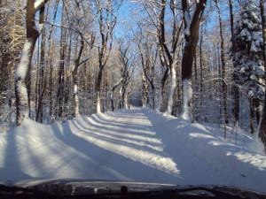 Řidiči nezapomeňte! Od víkendu platí zimní výbava