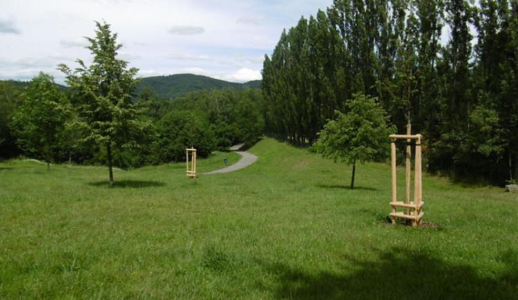 Liberec jako džungle. S trávou jsme letos zápasili marně, přiznává město