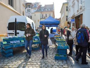 Neděle v Kostelní ulici ve znamení jahod. Utkají se jedlíci knedlíků, budou marmelády, zmrzlina i dílničky