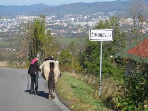 Šimonovice, obec s největším nárůstem obyvatel v Libereckém kraji
