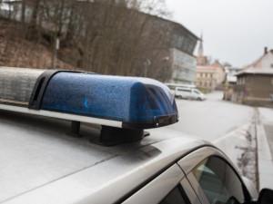 Bývalý zaměstnanec kradl v pizzerii. Odnesl si desítky kilogramů šunky i počítačový monitor
