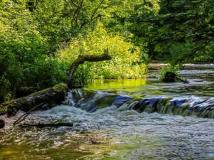 Na Novoborsku zakázali kvůli suchu zalévat vodou z potoků
