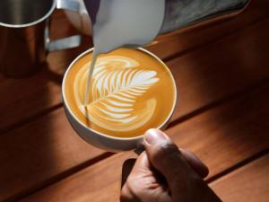 DRBNA BARISTKA: Kouzlo Latte art. Jak se naučit základy v domácích podmínkách?