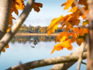 Na Máchově jezeře bude letos poprvé možné lovit ryby i z loděk