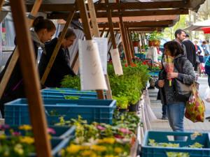 Farmářské trhy začaly už i u Fora. Otevřeno mají šest dní v týdnu