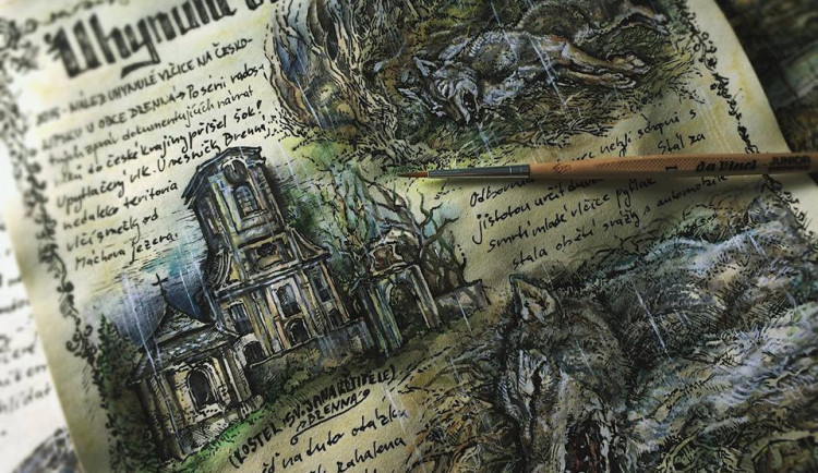 Do Čech přicházejí vlci skrze pohoří i literaturu, vznikající kniha mapuje jejich minulost i současnost