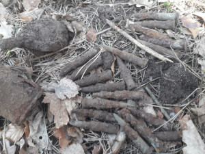 Hledač pokladů našel ruské granáty a nábojnice, na místo vyrazili pyrotechnici