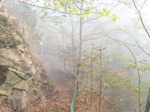 FOTO: Hořící stromy padaly do řeky. Požár zasáhl okolí Riegrovy stezky