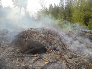 Na Tanvaldském Špičáku stále hoří les, noční déšť ho neuhasil