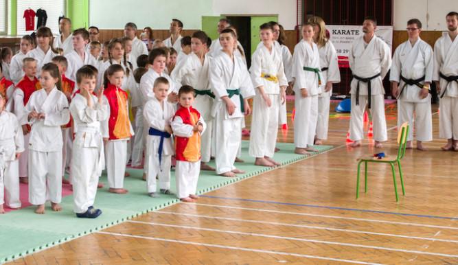 Letošního Slavia cupu se zúčastnila téměř stovka mladých karatistů