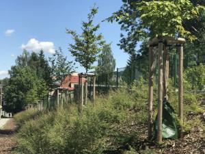 Speciální vaky pro zavlažování používají už i v Jablonci