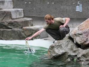 Liberecká zoo chce vodu využívat opakovaně, spotřeba je velká