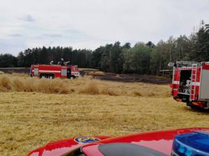 FOTO: Hasiči zasahovali u požáru pole u Bezdězu