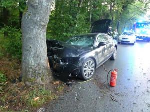 Auto v Dolní Suché čelně narazilo do stromu. Hrozilo, že začne hořet