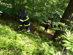 Senior vyrazil na borůvky, ztratil se v lesích. Našli ho před půlnocí u soušské přehrady