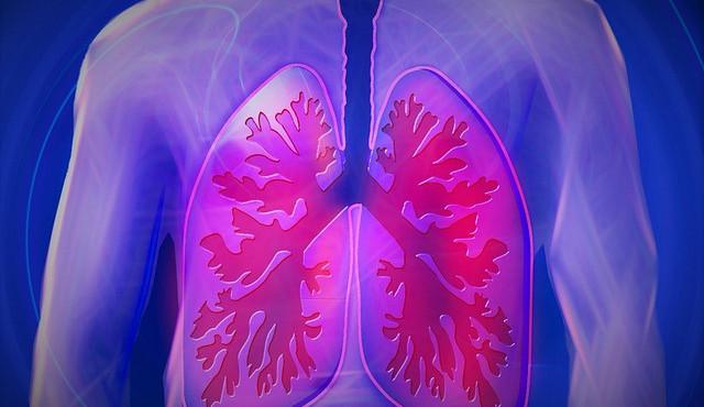 Máte zdravé plíce? Můžete si je nechat vyšetřit bez objednání i doporučení od obvoďáka