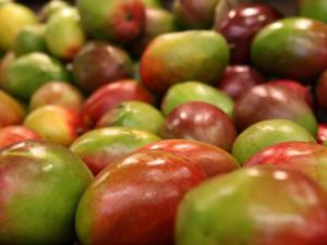 Mango plné pesticidů, takové objevili inspektoři v Penny