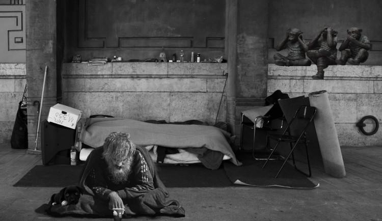 Na ulici se psem. Bezdomovci s hafanem moc šancí na ubytování nemají