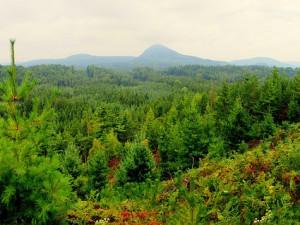 V Lužických horách přibudou další zapomenutá místa. Budou odhalovat zdejší minulost