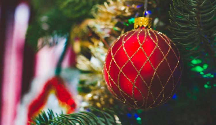Letošní rozsvěcení vánočního stromku zpestří v České Lípě zpěvačka Ewa Farna