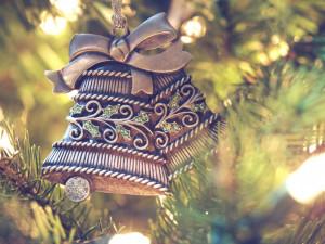 Na Staromáku bude letos stát opět vánoční strom z Libereckého kraje. Vyrostl v Semilech