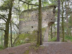 TIP NA VÝLET: Hrad Vítkovec u Milčanského rybníka zničila třicetiletá válka