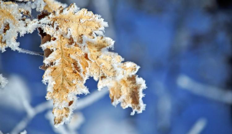Na Vánoce čekají meteorologové mráz. Bude také sníh?