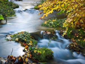 Potok Stebenka, který protéká Turnovem, se dočká revitalizace