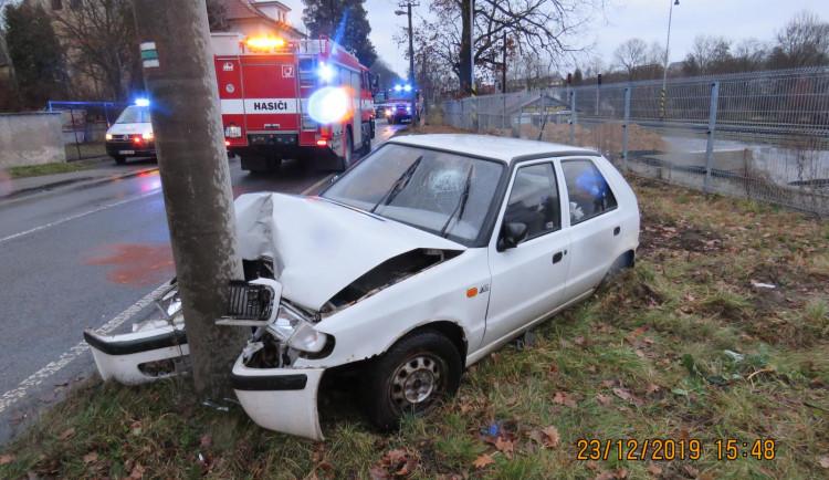 Kapr skočil za jízdy ženě do klína, skončila i s autem v betonovém sloupu