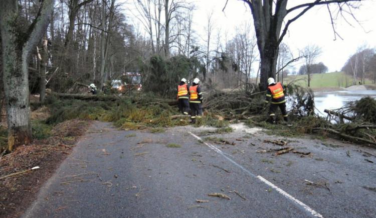 Řetězová nehoda a popadané stromy. Počasí komplikuje dopravu v kraji