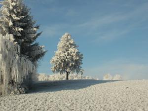 Liberecký kraj už pokrývá třicet cenťáků sněhu. Nejvíc je ho na horách