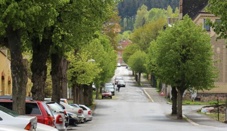 Jablonecká lipová alej půjde k zemi na přání místních. Opozice by si rekonstrukci představovala jinak