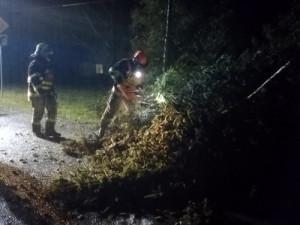 FOTO: V souvislosti s větrem vyjížděli hasiči téměř ke 200 událostem