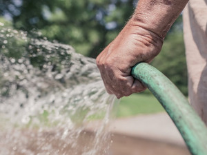 Od středy je kvůli suchu zákaz odběru povrchových vod na Novoborsku
