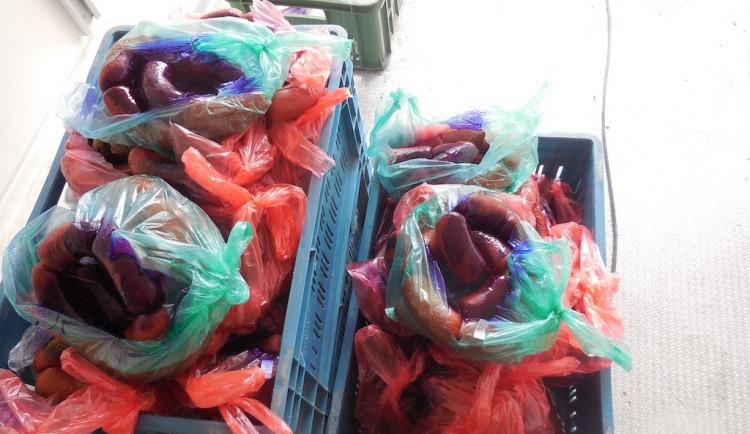 FOTO: Chovatel měl nelegální výrobnu špekáčků i gothaje. Výrobky nabízel přes sociální sítě
