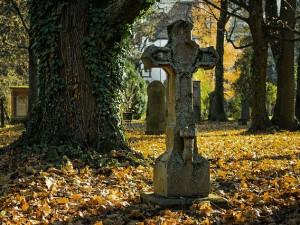 VIDEO: Víte, kde byla liberecká pohřebiště? Možná netušíte, když po nich jdete