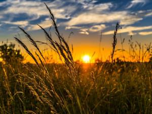 Před půlnocí nastane slunovrat, začíná astronomické léto