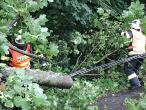 Hasiči v Libereckém kraji po bouři odstraňovali spadlé stromy