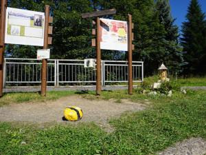 Harrachov hledá novou trasu pro včelí stezku, letos ji neotevře