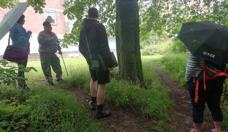 Zeleň zakrývala lidem okna. Sepsali petici a Jablonec jim nyní vyhoví