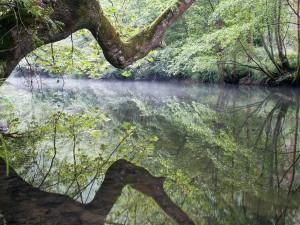 V chrastavském lesoparku vzniknou dvě nové tůně