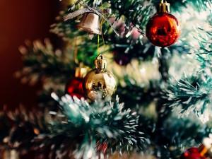 Do konce listopadu potrvá sbírka vánočních ozdob. Pomůže onkologicky nemocným
