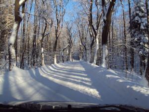 Na šestnácti místech v Libereckém kraji už je povinná zimní výbava