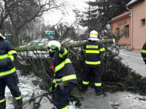 Na Liberecku bude o víkendu silný vítr. Meteorologové vydali výstrahu