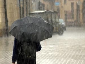 Loňský rok byl v Česku teplejší ale i deštivější než obvykle