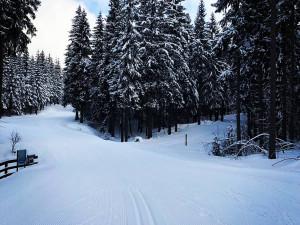 Skončila úprava magistrály. Sněhu je dost, ale do Jizerek potřebují lesáci