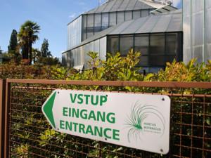 Botanická zahrada zatím neotevře. Lidé by kvůli opatřením nemohli do skleníků