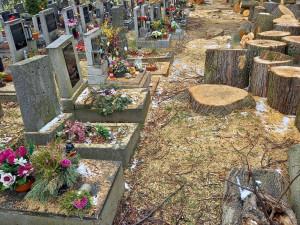 Necitlivé kácení na hřbitově v Horním Růžodole. Pryč jsou i zdravé stromy, piliny zůstaly na hrobech
