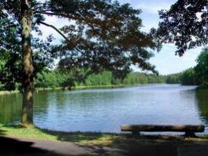 Oprava hráze Hradčanského rybníku komplikuje dopravu z Mimoně do Doks