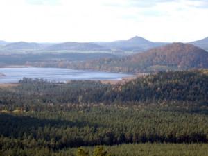 Kvůli kůrovci platí zákaz vstupu do rezervace Břehyně-Pecopala u Doks